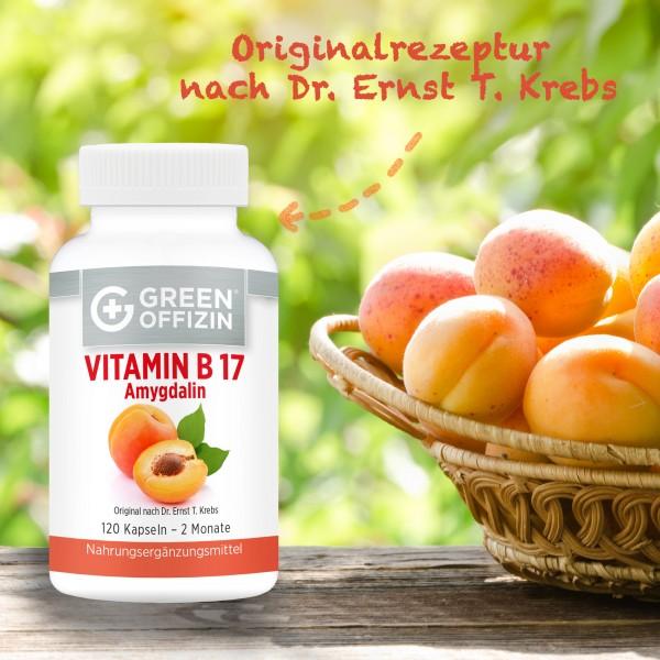 Vitamin B17 - 120 Kapseln + Buch: Krebszellen mögen keine Himbeeren