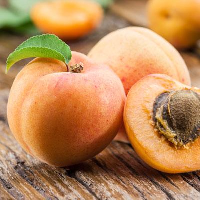 Premium Vitamin B17 Amygdalin aus Aprikosenkernen